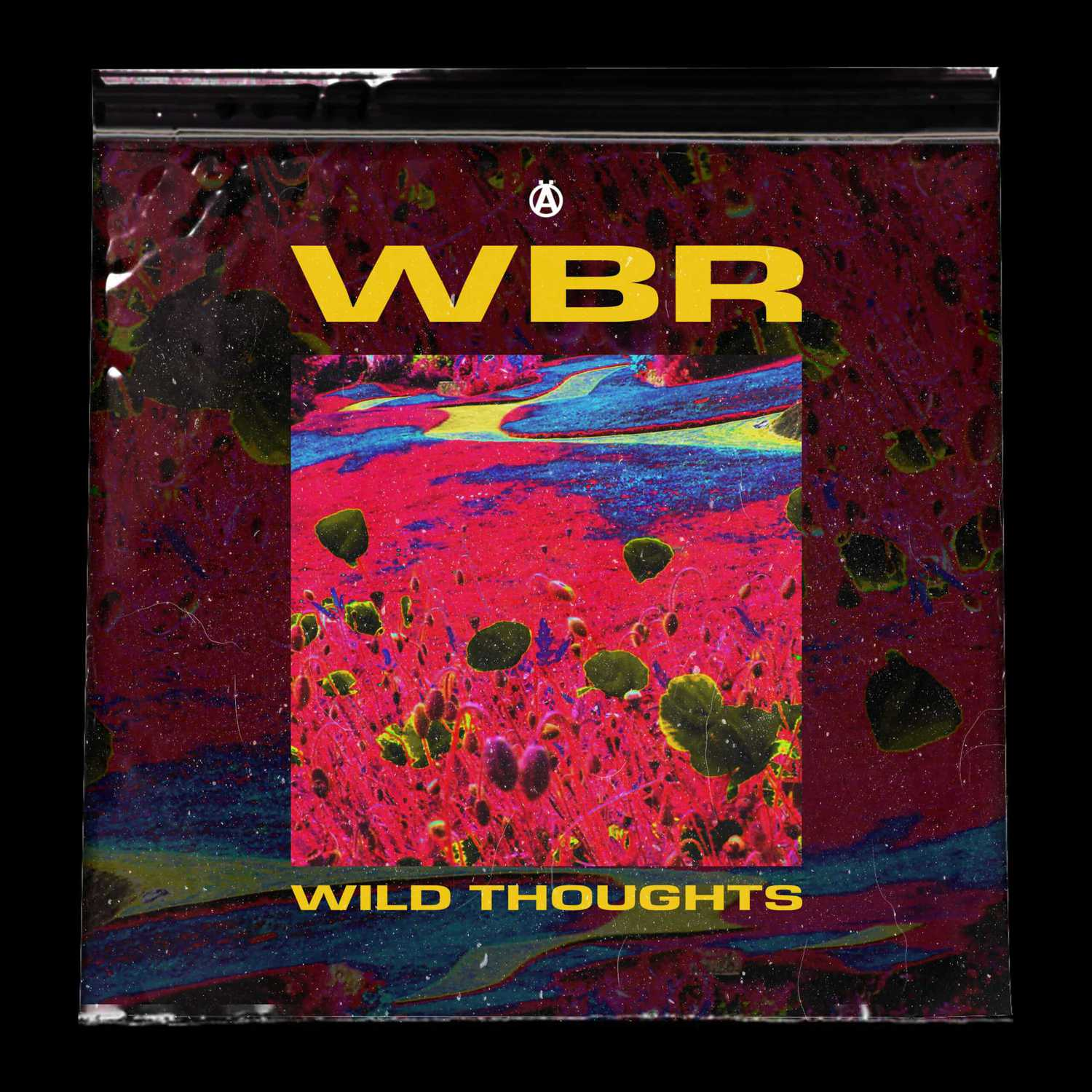 WBR Wild Thoughts Artwork